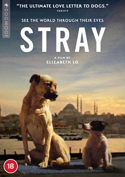 Stray 2020 DVD - Volume.ro