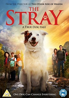 The Stray 2017 DVD